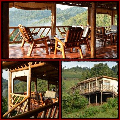 Haven Lodge - Buhoma - Bwindi Impenetrable Forest