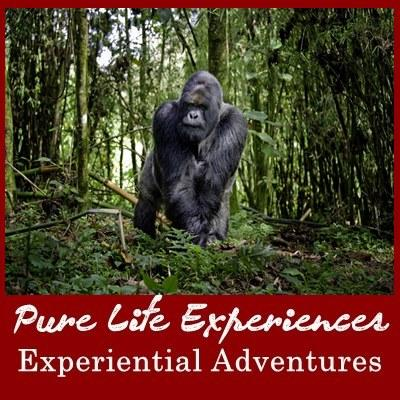 Experiential 14-Day Adventure Family Safari with Teens