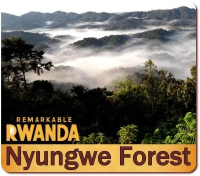 Best Places to visit in Rwanda-Land of a Thousand Hills