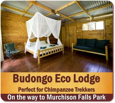 Affordable Budongo Eco-Lodge in the Heart of Budongo Forest
