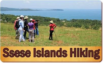 Top Things to do and see on the Ssese Islands on the Equa