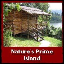 nature-prime-island