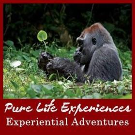 3 day  Rwanda Gorilla Trekking Safari