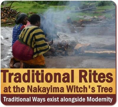 The Nakayima Tree in Mubende-a Cultural Heritage Site