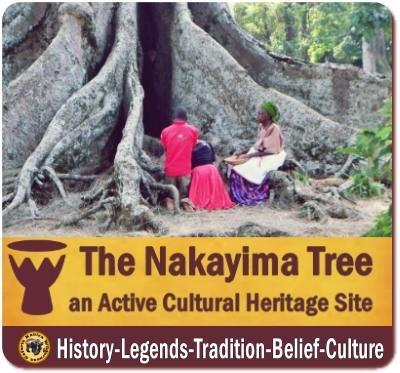 The Nakayima Tree