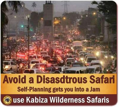 Do-it-yourself Safari - a recipe for Disaster