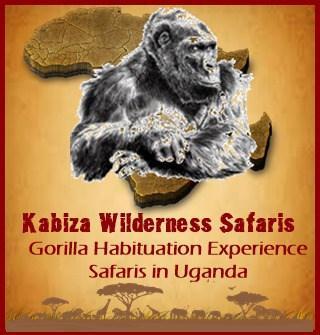 Practical Hiking - Climbing Safari Advice and Tips for Uganda