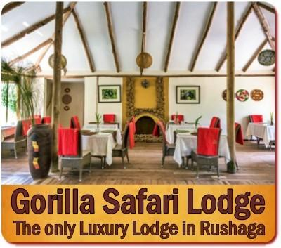 Gorilla Safari Lodge - Rushaga - Bwindi Forest