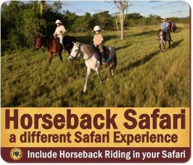 Horseback Wildlife Safari - Lake Mburo Park
