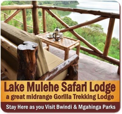 Lake Mulehe Safari Lodge - Gorilla Trekking Lodge for South Bwindi Forest
