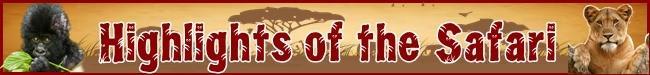 July-August 7-Day Gorilla Safari with Gorilla Permits