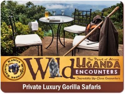 5-Day-Luxury Twice Gorilla Trekking Safari in Uganda