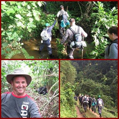 Planning a Gorilla Trekking Safari for your Group with the Mountain Gorllas