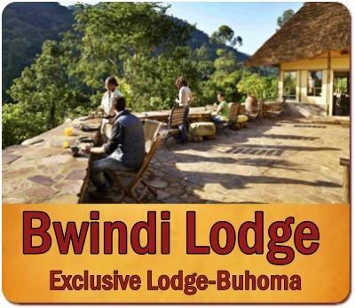 12-Day Highlights of Uganda Luxury Safari