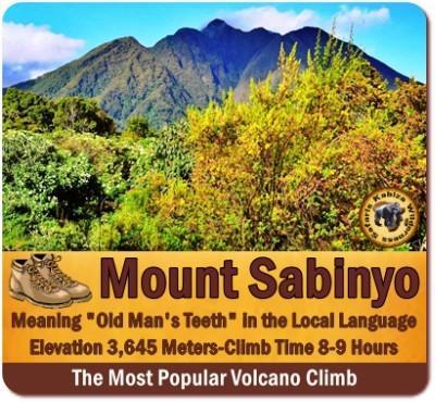 5-Day Luxury Fly-In-Gorillas-Volcanoes-Golden Monkeys Adventure Safari