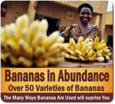 Uganda is the Banana Republic of Africa and  Produces most Bananas