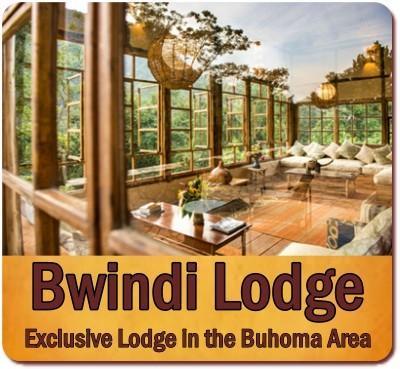 3 Day Luxury Fly-In Gorilla Trekking Safari-Bwindi Forest