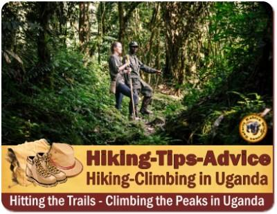 3-Day Mahoma Trail Hike - Rwenzori Mountains of the Moon
