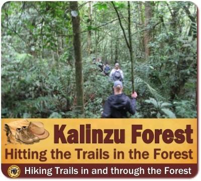 Hitting the Trails - Best Hiking Trails in Uganda