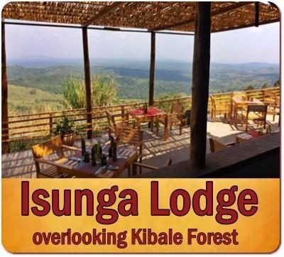 Value+ 5 Day Kibale Forest Chimps plus Queen Elizabeth Park Wildlife Safari
