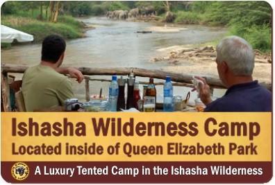 The Tree Climbing Lions of Ishasha - Queen Elizabeth Park