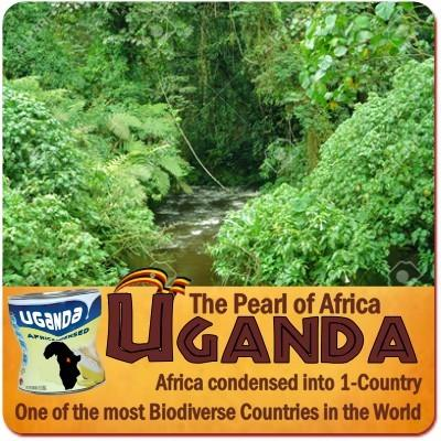 Uganda is Africa Condensed into a small Country
