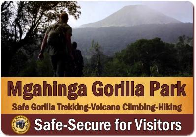 Is it SAFE to visit Mgahinga Gorilla Park