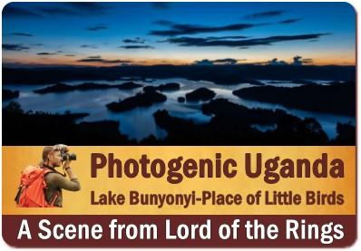 Uganda-is the must-do Photographic Destination in all of Africa