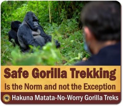 3-Day Gorilla Trekking Safari - Buhoma - Bwindi Impenetrable Forest