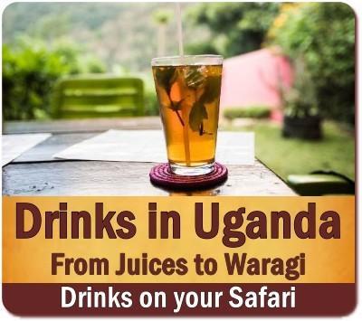 Drinks and Refreshments on Safari
