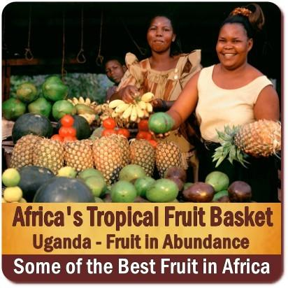 Uganda -The Tropical Fruit Basket of Africa