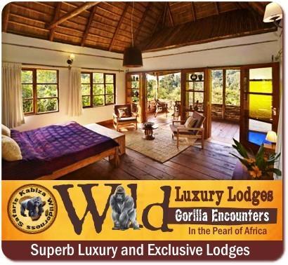 Luxury Gorilla Trekking Lodges