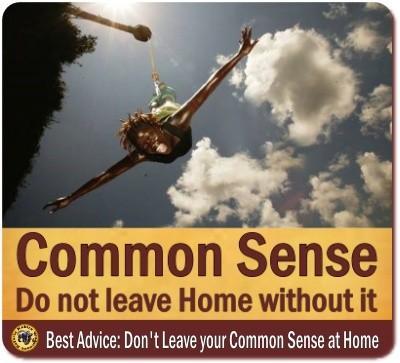 Common Sense on Safari