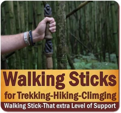 The Two Must-Haves for Gorilla Trekking are a Porter and a Walking Stick