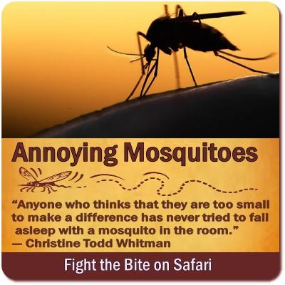 Prevent Insect Bites on Safari