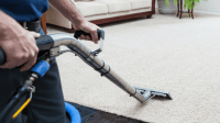 Eight Reasons to Get your Carpet Cleaned Now   Kaboutjie
