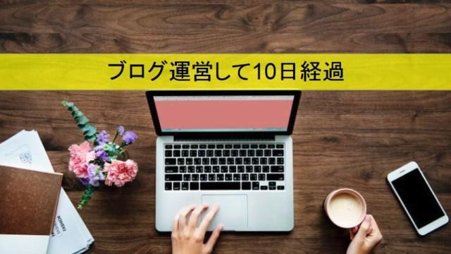 ブログ運営報告10日アイキャッチ画像