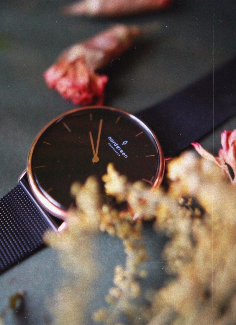Focus on Sustainability | Nordgreen Watch Review