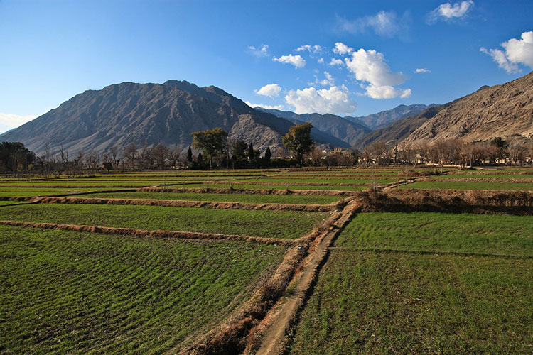 Afghan countryside.
