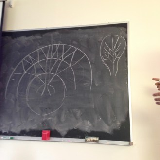 A third-year art student researched the connections between group theory and the tree branching patterns.