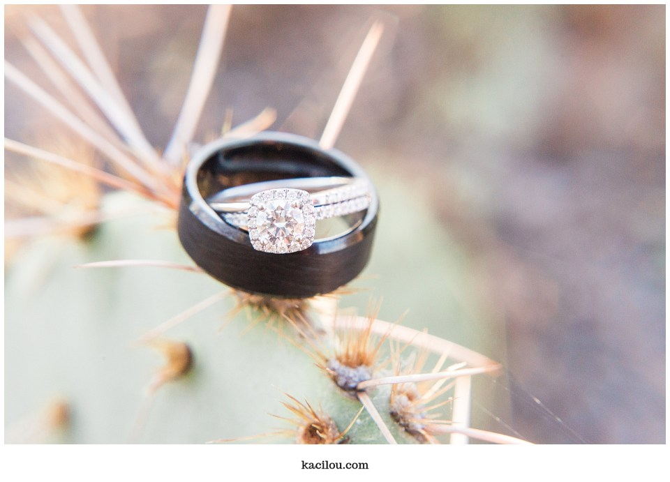 wedding rings on cactus