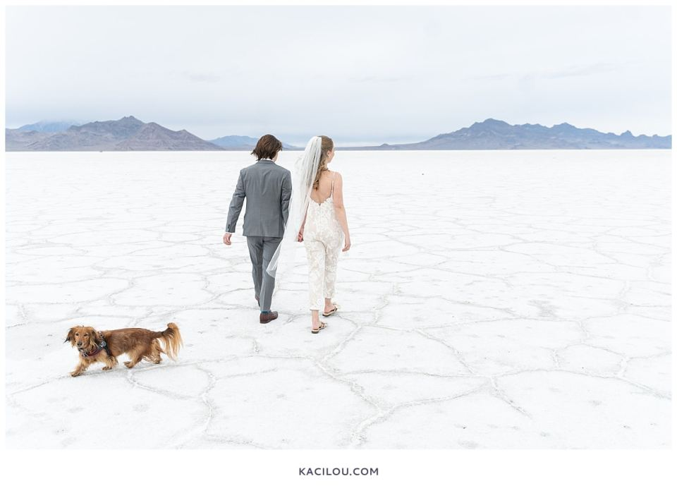 bride and groom walking with each other and dog at salt flats