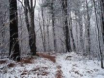 first-snow-ks
