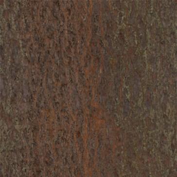 tree_bark