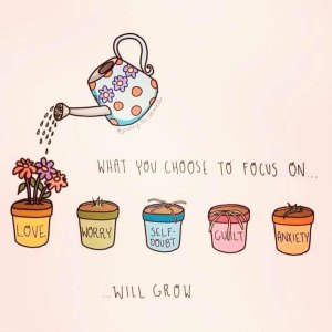 what you choose to focus on will grow