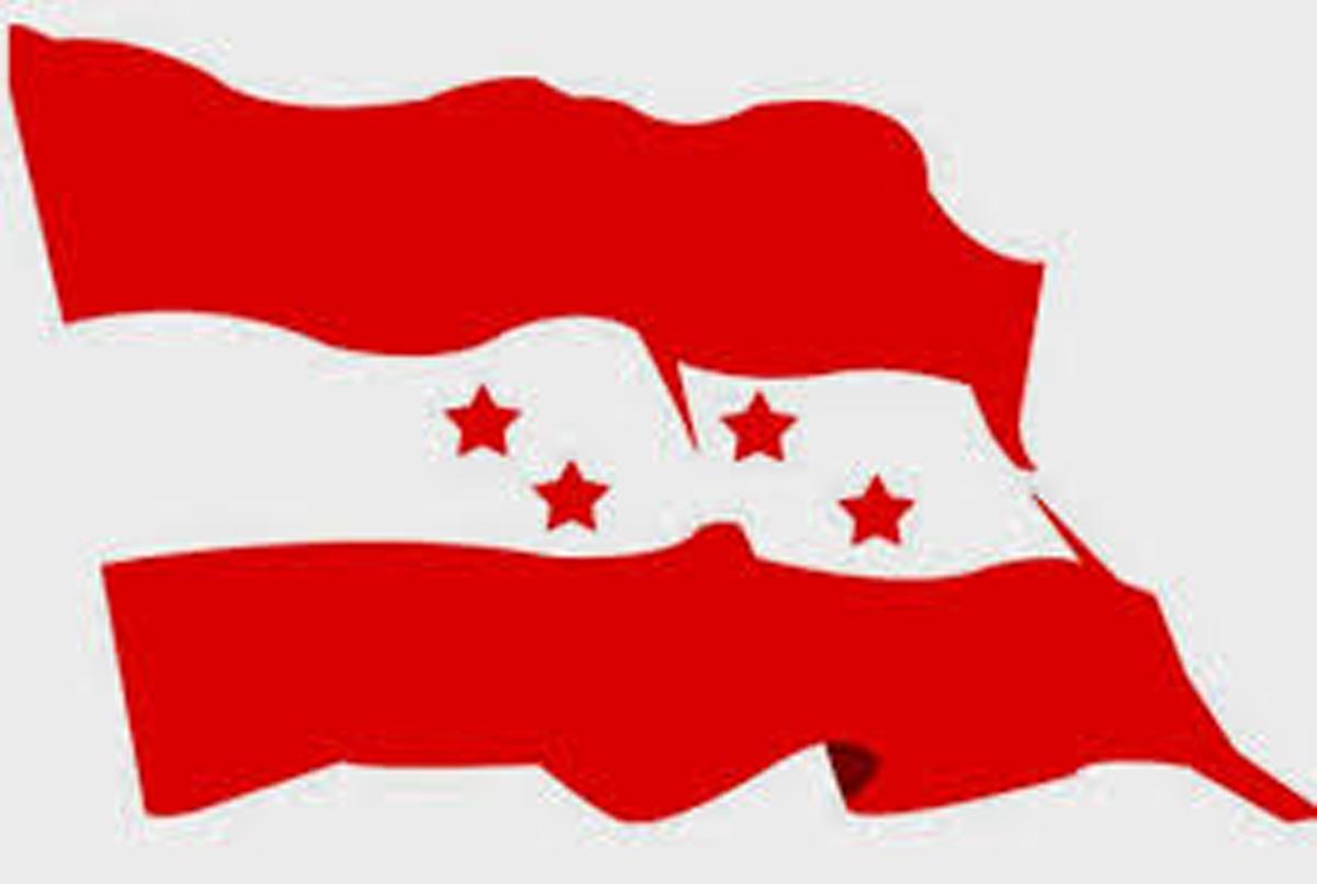 काँग्रेसद्धारा १० वटा विभागहरुका प्रमुख सहित पदाधिकारीको मनोनित