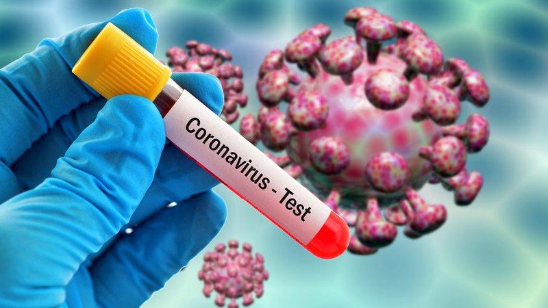 भारतमा गत २४ घण्टामा थप २ लाख १७ हजार भन्दा बढी व्यक्तिमा कोरोना भाइरसको सङ्क्रमण