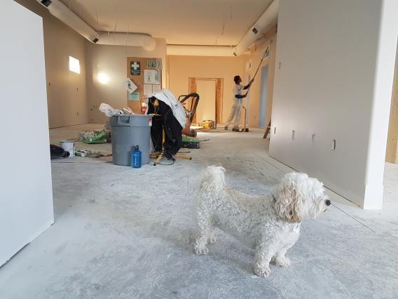 apartment-architecture-blur-735319