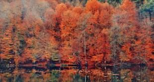 sonbaharda gezilecek 5 romantik yer