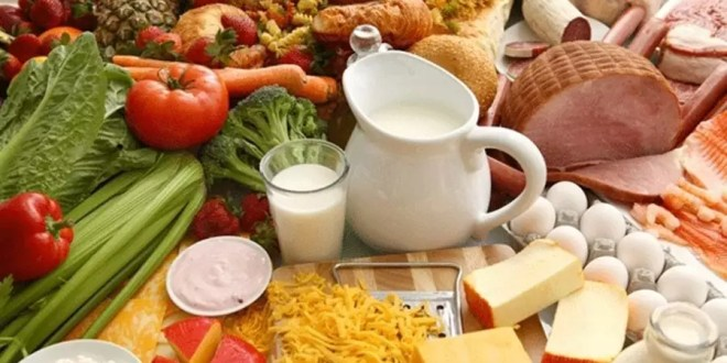 probiyotik besinler